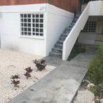 Cancùn: Renta Rebajada de Cèntrico Departamento amueblado Duplex